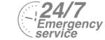 24/7 Emergency Service Pest Control in Hillingdon, Ickenham, UB10. Call Now! 020 8166 9746